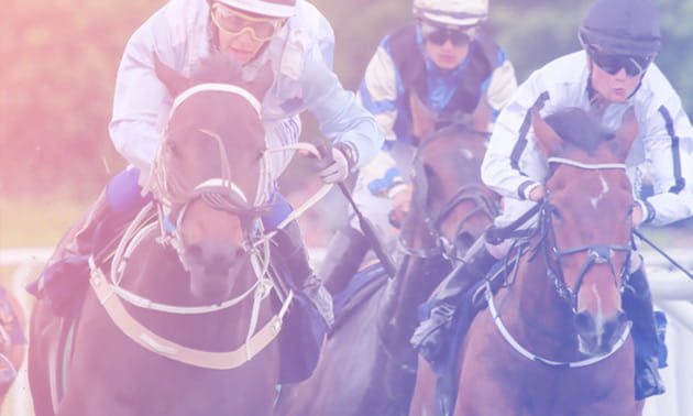 The Betfred Horse Racing Betting Review: Everything You Need