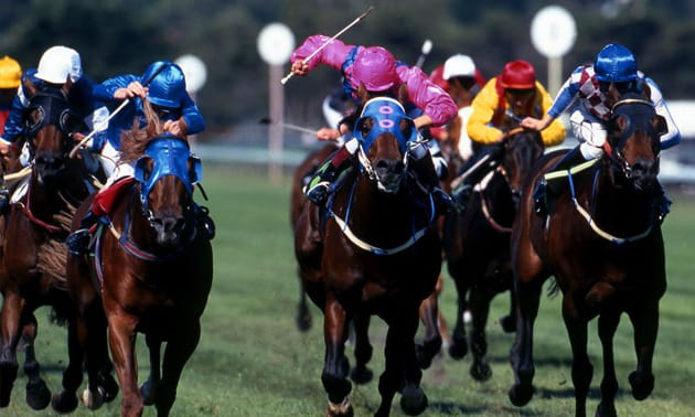 Bethard Horse Racing Betting: Impartial and Comprehensive Guide