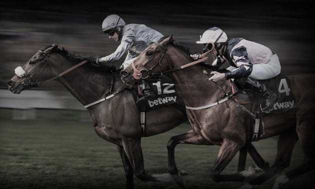 Horse racing systems uk review best horse 2017 goal profits review betting systems strategies betway horse racing publicscrutiny Gallery