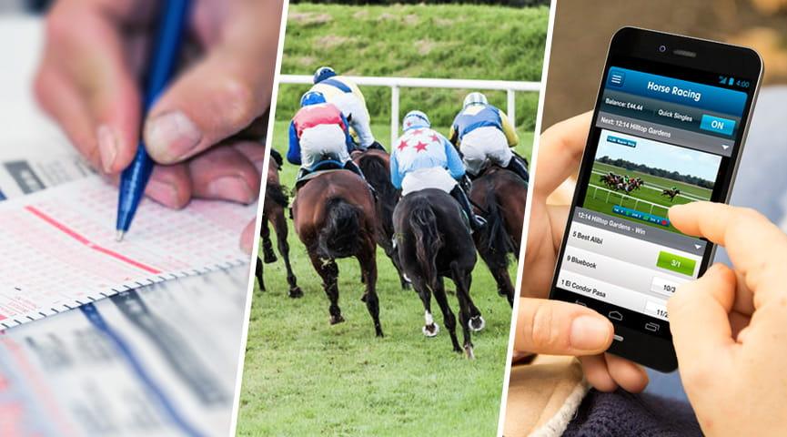 Betting gambling horse online racing