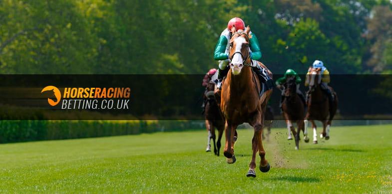 Horse race betting blogger sydney to hobart yacht race 2021 betting